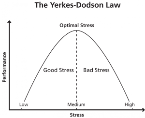 graph of the Yerkes-Dodson Law